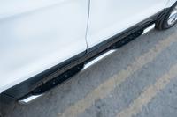 Пороги труба с накладкой Ford Ecosport 2014- (d76)