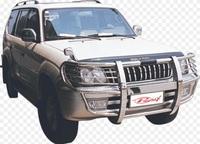 Дуга метал - защита переднего бампера Toyota Land Cruiser Prado 90/95 #3
