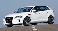 Аэродинамический обвес Hofele Design для Audi A3 (8P)