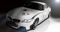 Аэродинамический обвес Tommy Kaira Rowen для BMW Z4 E89