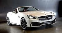 Обвес WALD Black Bison для Mercedes SLK R172
